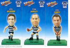 2009 Select AFL Color Figurine picture card Team Set Geelong (3)
