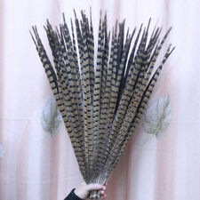 Wholesale,3000pcs natural pheasant tail feathers of 60-70cm/24-28inches