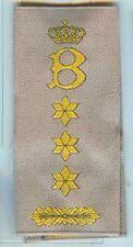 Paesi Bassi: rango cinghie: colonnello con B-Giallo su Cachi .1 paia