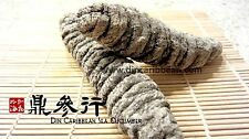DinCaribbean Dried Sea Cucumber Mexicana Grade AA Large (1LB)