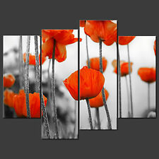 RED POPPIES FIELD CANVAS WALL ART PICTURES PRINTS LARGER SIZES AVAILABLE