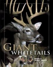Giant Whitetails : A Lifetime of Lessons (NoDust) by Mark Drury; Terry Drury