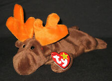 TY CHOCOLATE the MOOSE BEANIE BABY - MINT with MINT TAG (PRICE STICKER)