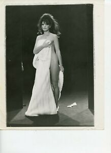 8 x 10 Photo Sexy Pinup photo Bathing Suit / Underwear / Lingerie