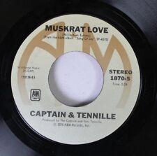 Pop 45 Captain & Tennille - Muskrat Love / Honey Come Love Me On A&M