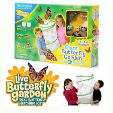 Giant Butterfly Garden w/ Bonus Figures Observation Habitat By Insect Lore