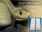 2  Ivory Snake Juma .125 ' 1/8' Scales 2' x 6' - Knife Handle Material