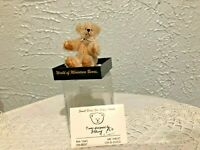 TEDDY BEAR Beige SHORT MOHAIR MOVEABLE LIMBS Artist Stacey Pio, LE. NEW in Case