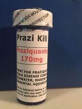 PraziKill Fish Tapeworm Treatment Capsules 170mg X 30 Praziquantel Capsules