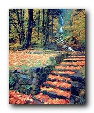 Waterfall And Fallen Autumn Leaves On Steps Scenery Nature Wall Art Print 16x20