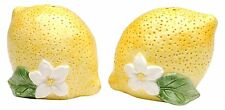 Two Yellow Lemons with White Flowers Salt and Pepper Shakers