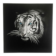 Leinwandbild Wandbild Poster Tiger mit Glitzer Kunstdruck grahmt 50x50x2cm