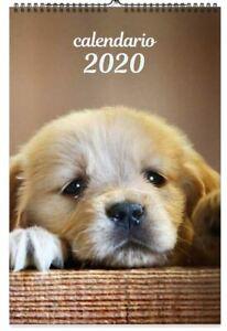 Chiens Chiots Puppies Calendrier De Mur 2020 Byblos