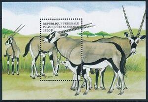 Comoros 1999 MNH MS, Wild Animals, Oryx Gazelle