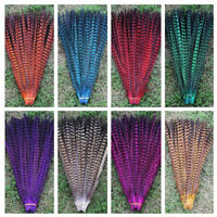 Wholesale 10-100 PCS Natural Color Pheasant Tail Feathers 30-60cm/12-24inches