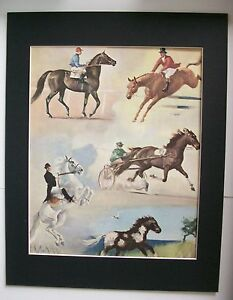 5 Horses Rear Up Trotter Print Wesley Dennis M Henry Bookplate 1951 11x14 Matted