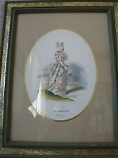 DORNROSCHEN Rosa Canina A.H. Payne French Art Water Colored Print Framed