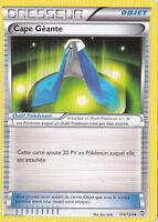 Cape Geante-Noir & Blanc-Dragons Exaltés -114/124 -Carte Pokemon Française Neuve