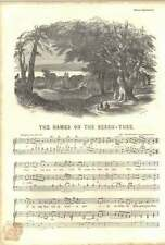 1852 Words And Music To The Dreams Of Youth 2 Names On The Beech Tree 1