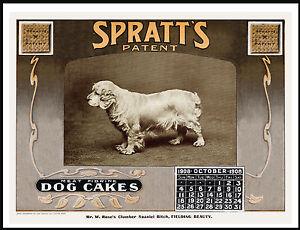 CLUMBER SPANIEL ON LOVELY VINTAGE STYLE DOG FOOD ADVERT CALENDAR PRINT POSTER