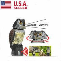 Owl Decoy 360° rotate Head Sound & Shadow Control Repel Pest Bird Crow Scarecrow