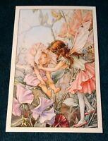 CICELY MARY BARKER FLOWER FAIRIES POSTCARD, THE SWEET-PEA FAIRY, OF THE GARDEN