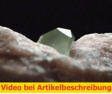 7446 Boracit boracite x=5mm ca 2*2*0,6 cm 1990 Bernburg Deutschland MOVIE
