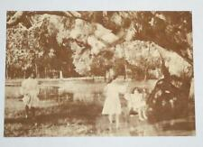 Postcard- By the Old Gum Tree - Australian Yesteryear Cards - History