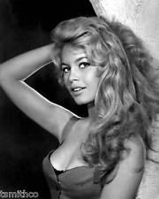 Brigitte Bardot 8x10 Photo 009