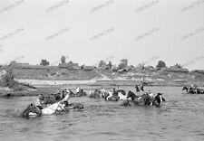34. DIVISIONE FANTERIA-Gomel-Homel-NUDE - SOLDIER-LAVAGGIO-cavalli-equitazione - 125