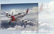 P 47D-22 Silver Lady Capt.James Carter Aviation Art Canvas print