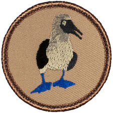 Cool Boy Scout Patch - Blue-Footed Boobie Patrol! (#187)