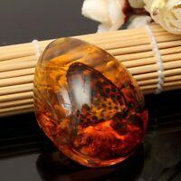 Chic résine ambre papillon insectes pendentif en pierre collier de beauté Bib FR