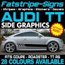 AUDI TT GRAPHICS STRIPES STICKERS DECALS COUPE ROADSTER RS S-LINE SPORT TTS