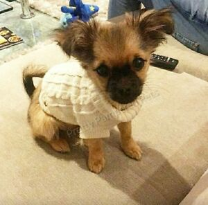 PUPPY COAT TINY XXXS Chihuahua White Knit Coat Pet Clothes Dog XXS Teacup