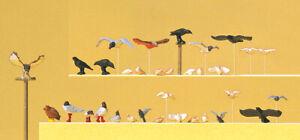 Preiser 10169 Pigeons, Mouettes, Crow Et Oiseaux de Proie, H0