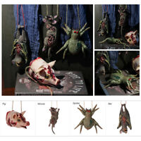Halloween Hanging Props  Haunted House Decor Simulation Mouse Bat Spider Pig