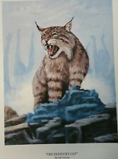 new kentucky wildcat print By Jeff Conway