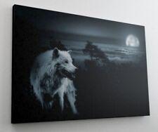 Wolf Vollmond Nacht Wald Natur Leinwand Bild Wandbild Kunstdruck L0638