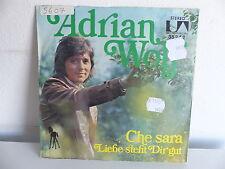 ADRIAN WOLF Che sara 35242