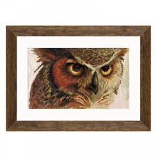 Counted Cross Stitch Kit NOVA SLOBODA - Owl
