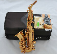 Professional TahShan Electrophoretic gold Curved Soprano Saxophone Bb Sax New