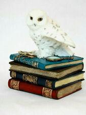 Schmuckbox Schneeeule auf Büchern Fantasy Figur Schatulle 12 cm Veronese