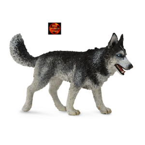 Siberian Husky Dog Toy Model Figure by CollectA 88707 Brand New