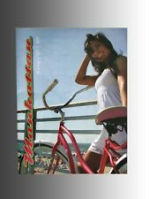 Collectable 2010 Manhattan cruiser bicycle, product catalog, new product line