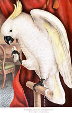 Great Sulphur Crested Cockatoo by James Whitley Sayer High Quality Art Print