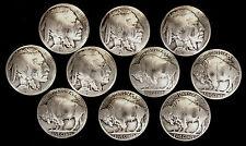 "10 Buffalo Nickel Concho Buttons - 1/8"" Chicago Screw Back - M - BIN"