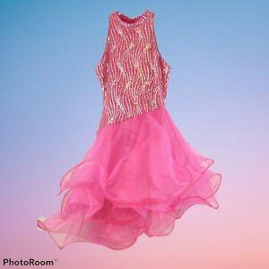 Chasing Fireflies Halloween Costume Girls Pink Flower Fairy Dance Sz 12 Dress Up