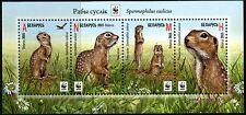 2015. Belarus.  WWF. Speckled ground squirrel. S/sheet. MNH