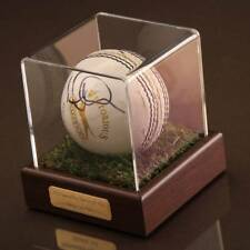 Moeen Ali Signed Cricket Ball Autograph Display Case England Memorabilia COA